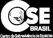 Logo CSEBrasil_brancoFINAL_29.01.2021